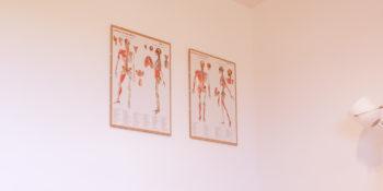 Visita ortopedica a Bagno a Ripoli con il dott. Ciardo